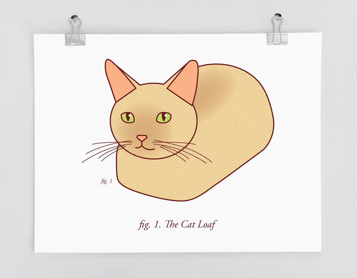 cat position diagram wiring ac split lg funny art print the loaf lovers