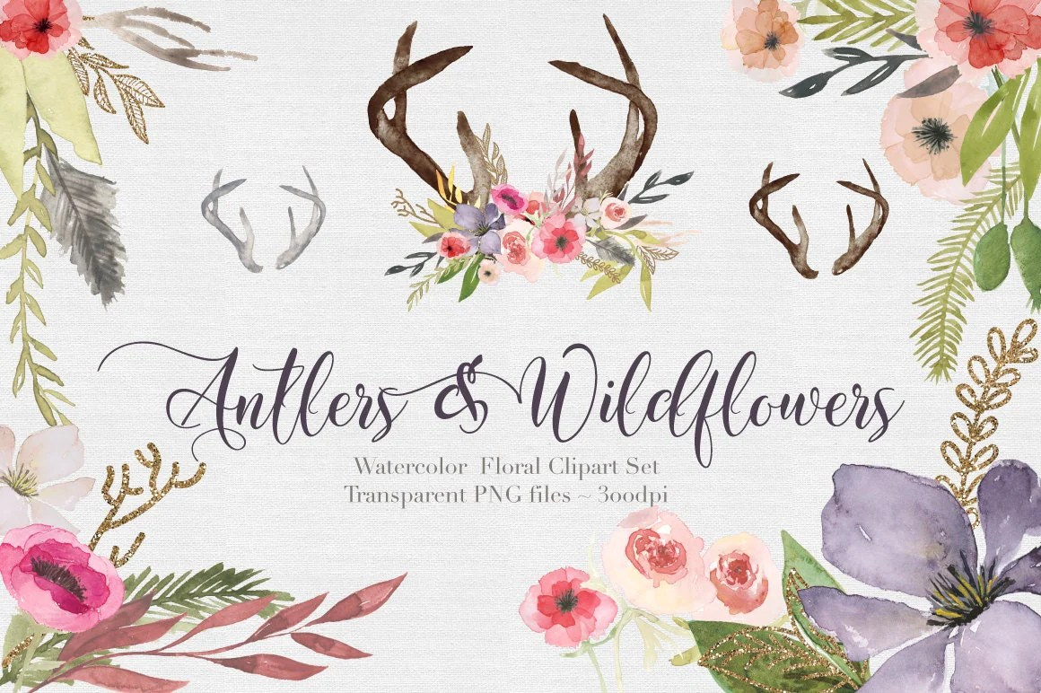 Antlers  Wildflowers Watercolor Clipart Files High Res