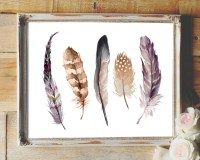 Feather print feathers feathers wall art feather printable