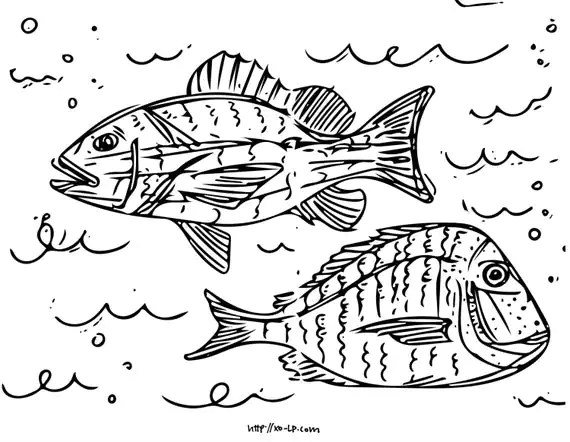 Printable Fish Coloring Pages: 5 Pages of Fish from the