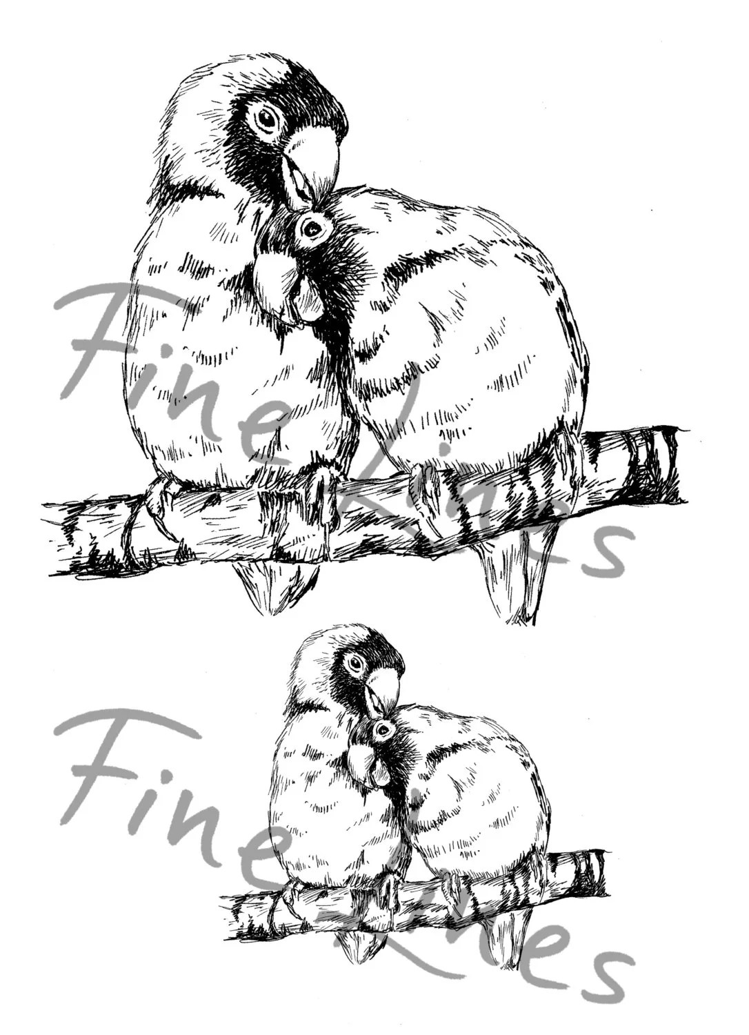 Love birds digital stamp Black and white by Rachelsfinelines