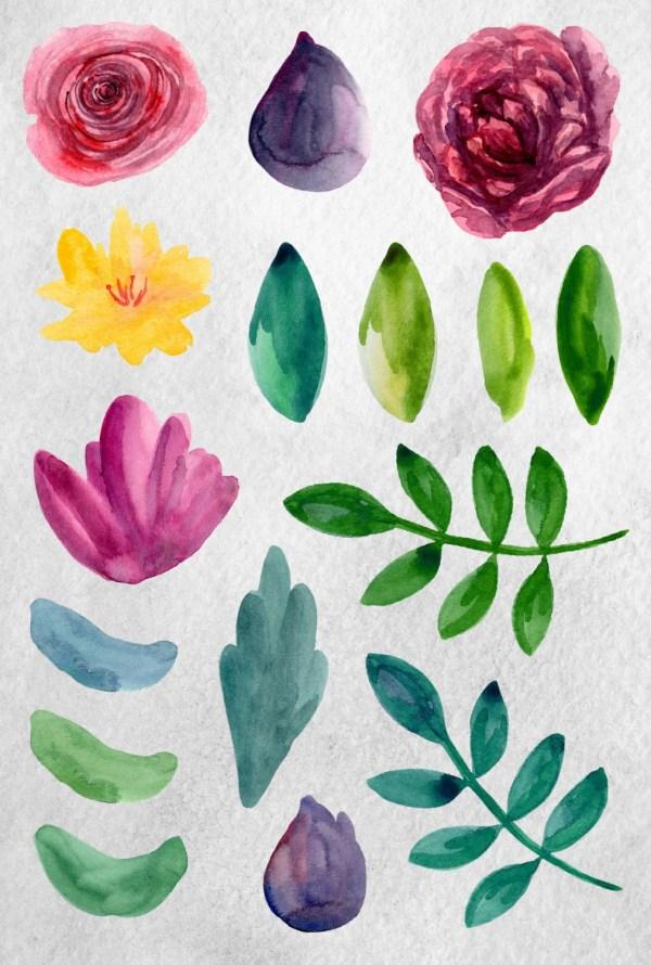 watercolor flowers clip art modern