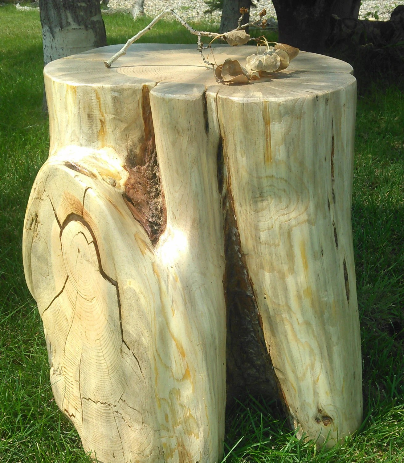 NOW ON SALE Stump Table Stump Stool Log End Table By WoodZwayz