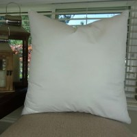 20x20 Pillow insert Made in USA Hypoallergenic Down