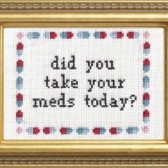 Needlepoint Stitches Stitch Diagrams Burglar Alarm System Wiring Diagram Subversive Cross Pdf Pattern Did You Take Your Meds