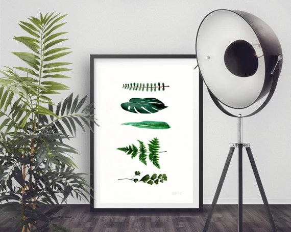 Modern minimalist art print - 5 Botanical leafs, Fern, Monstera, Bamboo, Succulent, minimalist plant illustration - hand painted wall art.