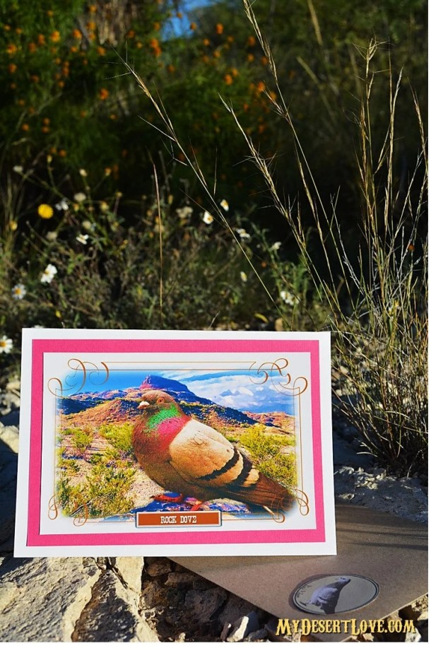 Dove Bird Greeting Card, ...