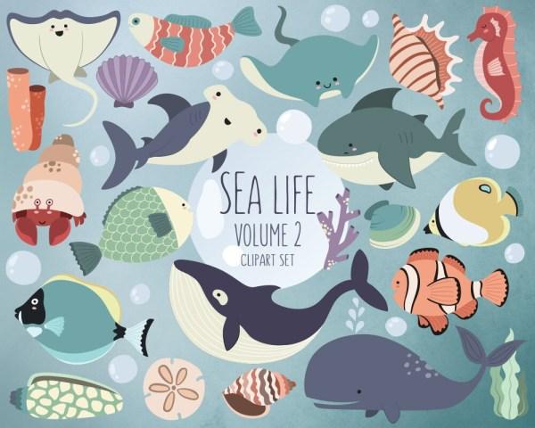 sea life clipart volume 2 ocean
