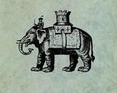 Royal Indian Elephant - A...