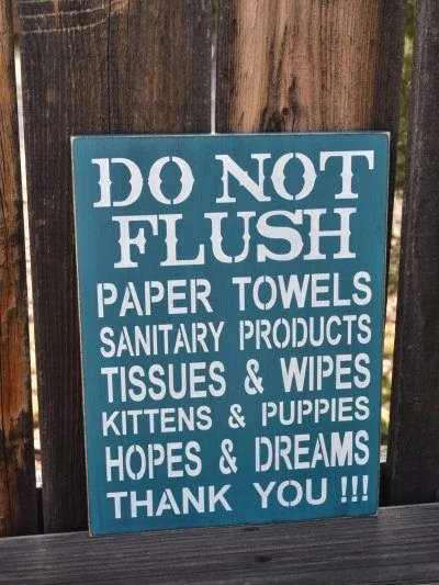 Do Not Flush Septic System Rules Sign by CreativeTouchWood2