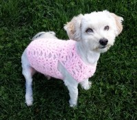 pink dog vest small dog coat yorkie sweater dachshund