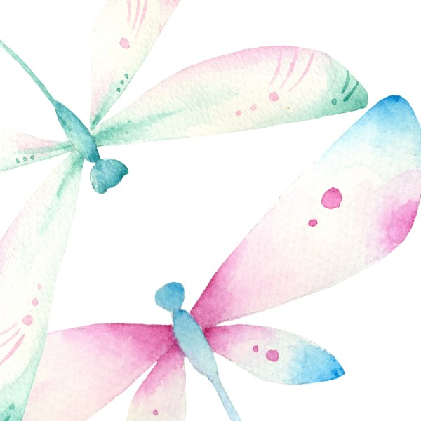 dragonfly clipart watercolor hand