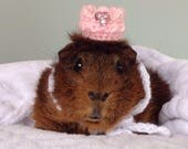 Tiny Animal Crown, Guinea...