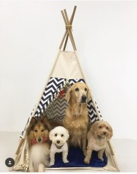 Pet bed teepee tent: various sizesdog bedscat by WilaaMalin