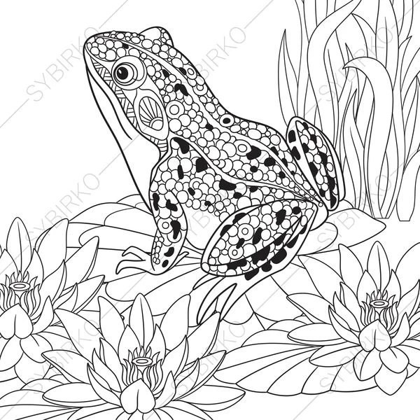 Frog. 2 Coloring Pages. Coloring book pages for Kids and