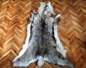 Axis Deer Skin Rug Texas Usa S014 450 00