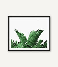 Palm Leaf Wall Art Banana Leaf Wall Art Botanical Art Palm