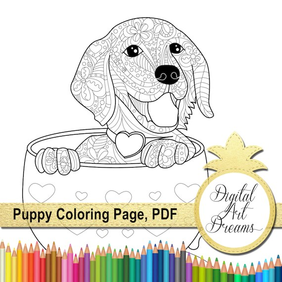 puppy coloring page a4 golden retriever printable page