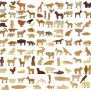 Wood Animal Toy Set Lions Tigers Bears And 100 More