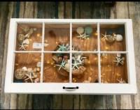 Seashell shadow box | Etsy