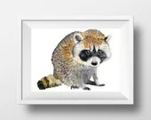 Raccoon - Painting. Print...