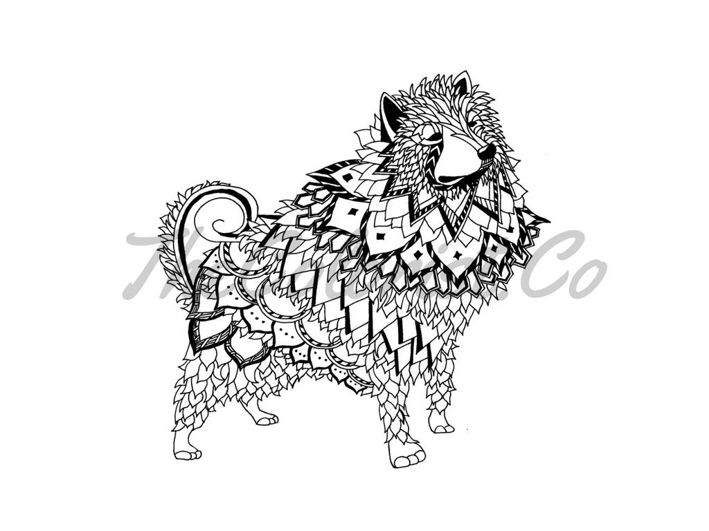 American Eskimo Dog Coloring Page & Line Art Print from