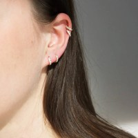 Small Gold Hoop Earrings For Cartilage | www.pixshark.com ...