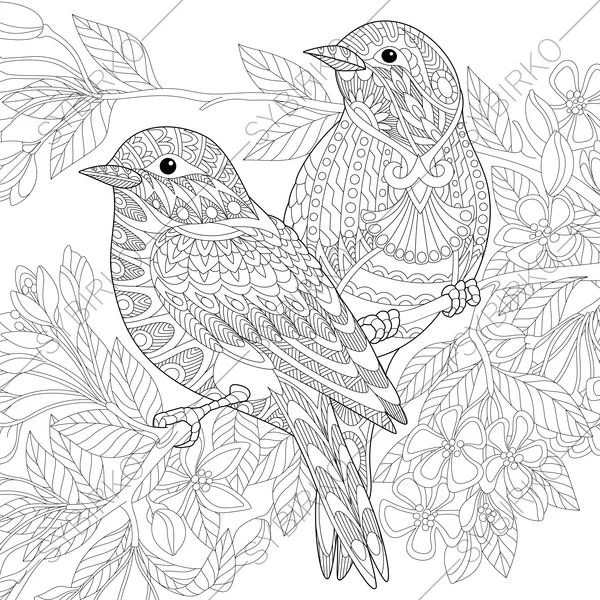 Adult Coloring Pages Sparrow Birds Zentangle Doodle Coloring