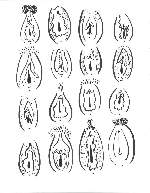 SALE 16 Vaginas // 11 X 14 Vagina Print // Feminist Art