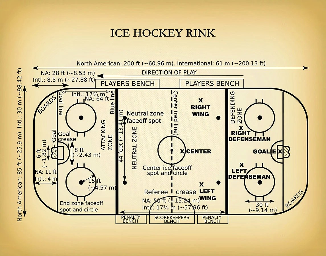 hockey player diagram basic nucleotide structure ice rink vers 2 art print