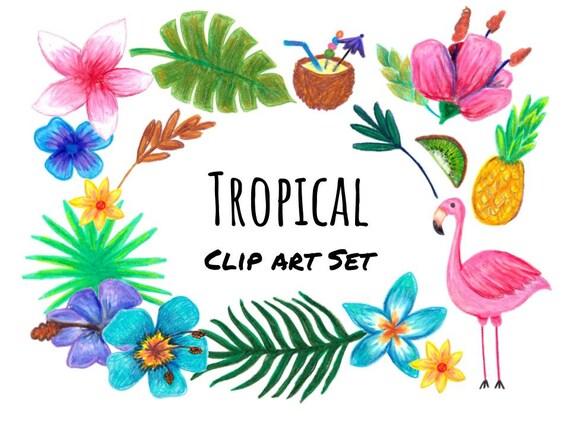 hand drawn tropical clip art