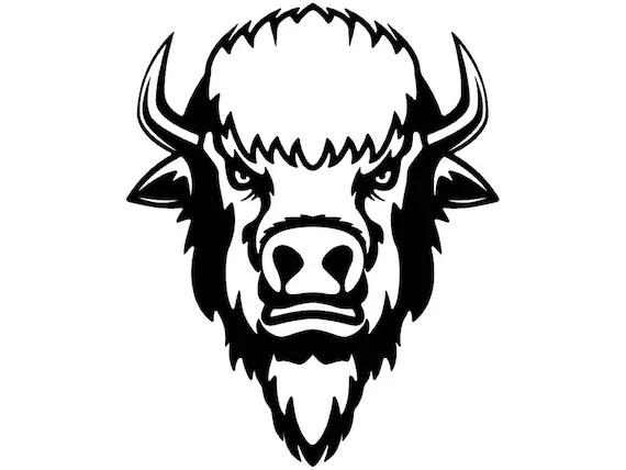 Buffalo Head Clipart 17
