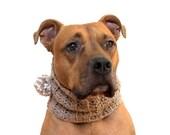Crochet Cowl for Dogs, Cr...