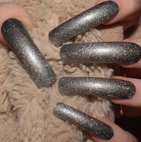 Silver Holographic Fake Nails Extra Long Curved False Nails