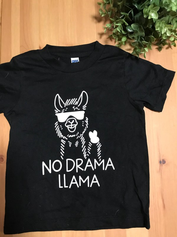 f48a19e5f 20+ No Drama Llama Shirt Pictures and Ideas on Meta Networks