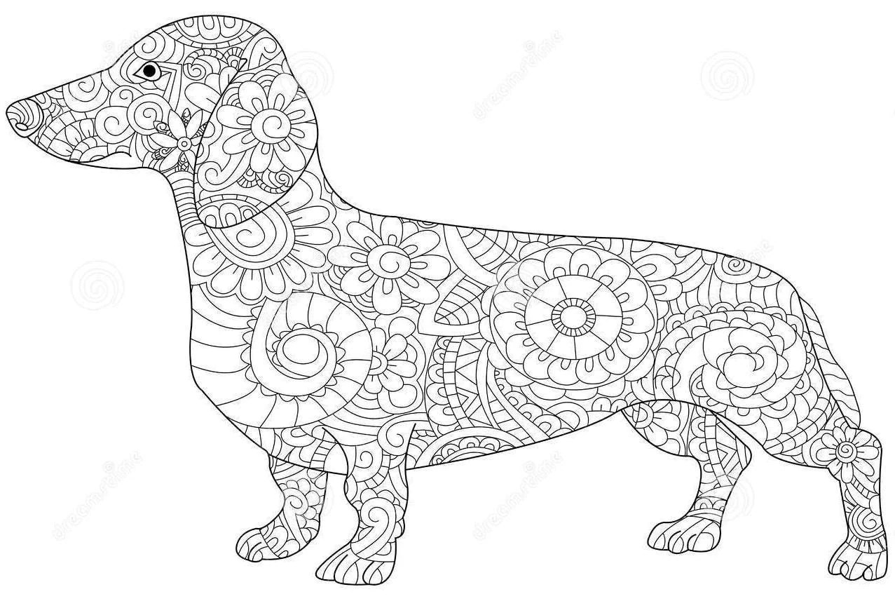 Mandala Dachshund Svg From Southernmomvinylshop On Etsy Studio