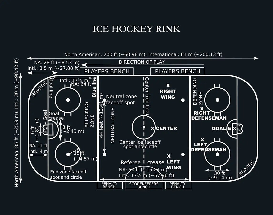 hockey player diagram goat intestines ice rink vers 2 art print