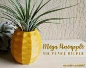 Mega Pineapple Pot, Geome...