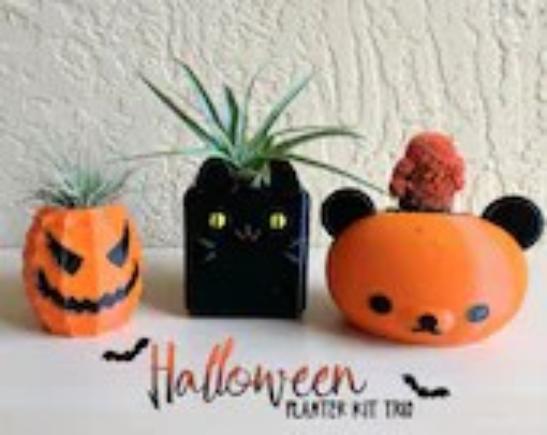 Halloween Planter Kit, Su...