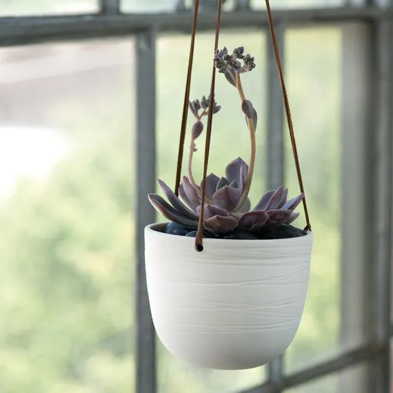 Scribble Hanging Planter
