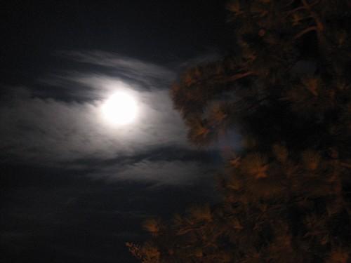 Risultati immagini per luna velata