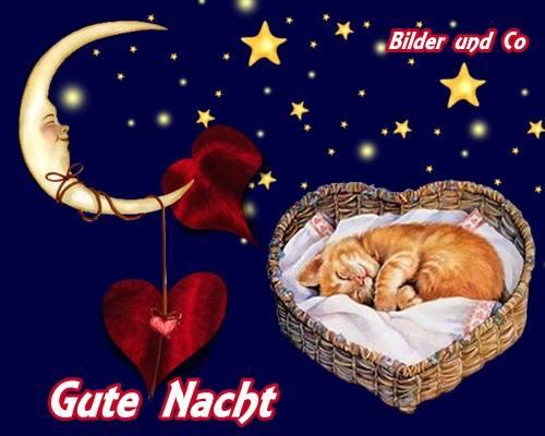 Gute Nacht Bilder  Gute Nacht GB Pics  GBPicsOnline