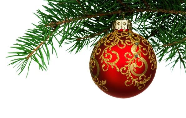 Rama 3d Wallpaper Обои зима красный елка новый год шар ветка зеленая