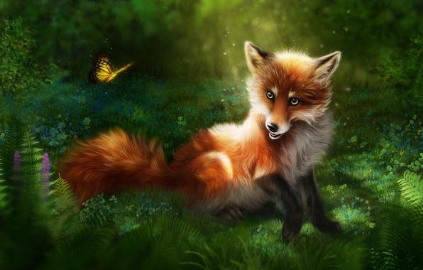 Hp 3d Wallpaper Windows 7 Обои трава природа рендеринг бабочка лиса рыжая