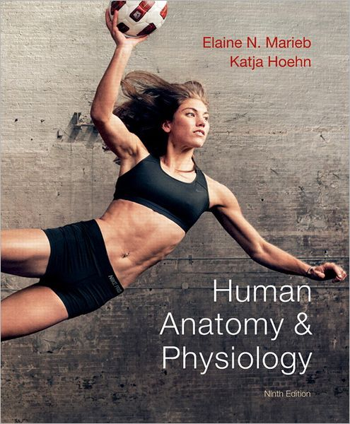 book cover for Human Anatomy & Physiology