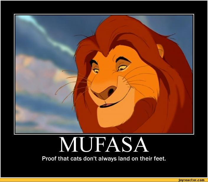 MUFASAProof that cats dont always land on their feet