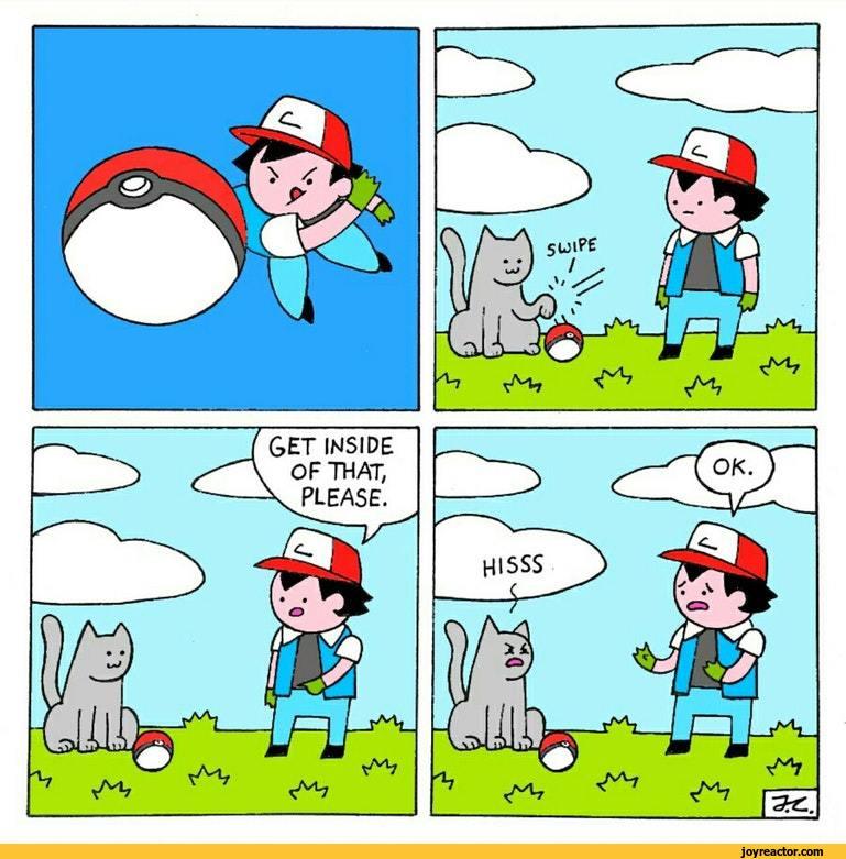 pokemon pictures and jokes