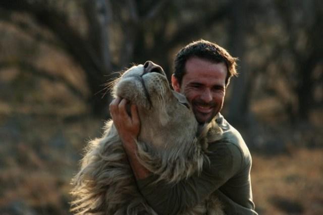 Дружба со львами зоолога Кевина Ричардсона