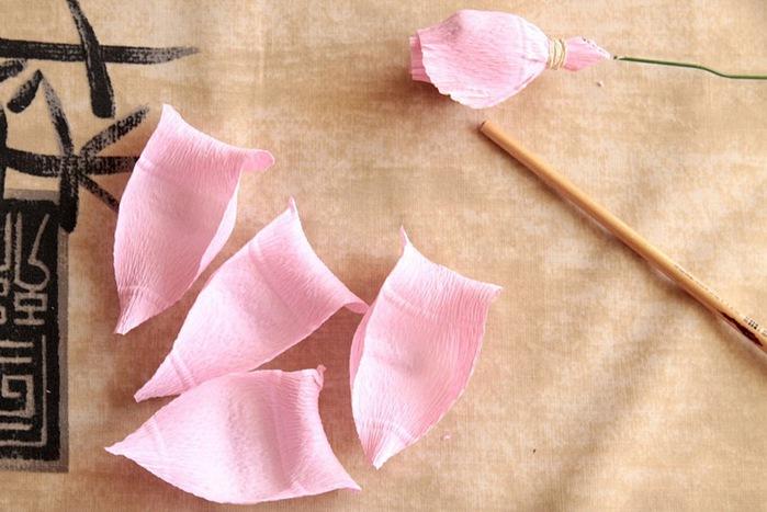 розы из гофрированной бумаги. мастер-класс (14) (699x467, 98Kb)