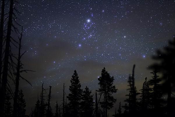 Katrorë të shkurtër për njerëzit me yje  Frazat e mençura